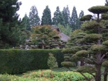 JapaneseGarden05